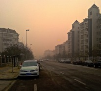 Just outside our apartment gate Monday morning looking toward the normally visible Yellow Sea.