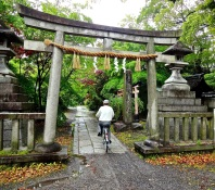 Riding under a tor and into a shrine near the Imperial Palace, a bicyclist makes his way on a drizzly Kyoto spring day.
