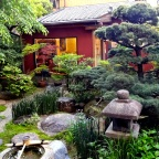 The Art of the Zen Garden