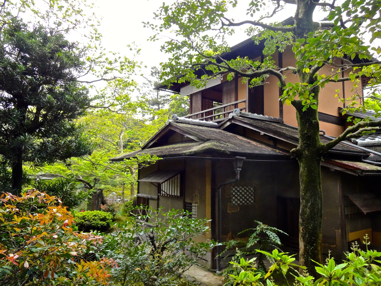 A traditional japanese home is engulfed by spring flowers and trees in kyoto large or