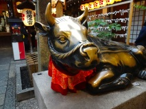 Like the boar in the leather markets of Florence, this bull in Kyoto gets his share of good luck rubs.