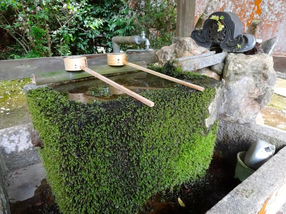 The Art of the Zen Garden (6/6)