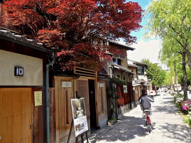 Machyia or tea houses dot the Gion quarter of Kyoto with their timeless wooden townhouses.