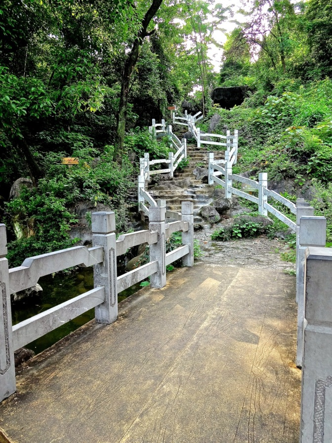 A crooked wooden and stone stairway winds its way up a leafy hill in Guilin.