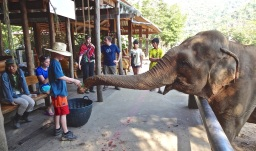 2012 Thailand - 310