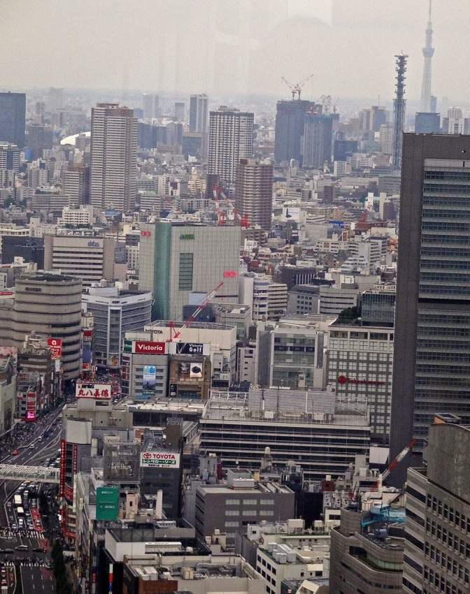 The view from atop the Park Hyatt Hotel looking toward the dense urban sprawl of Tokyo.