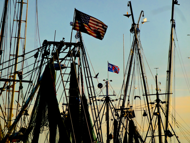 The setting sun reflects on the tall masts of shrimp trawlers lined up at the end of Shem Creek.