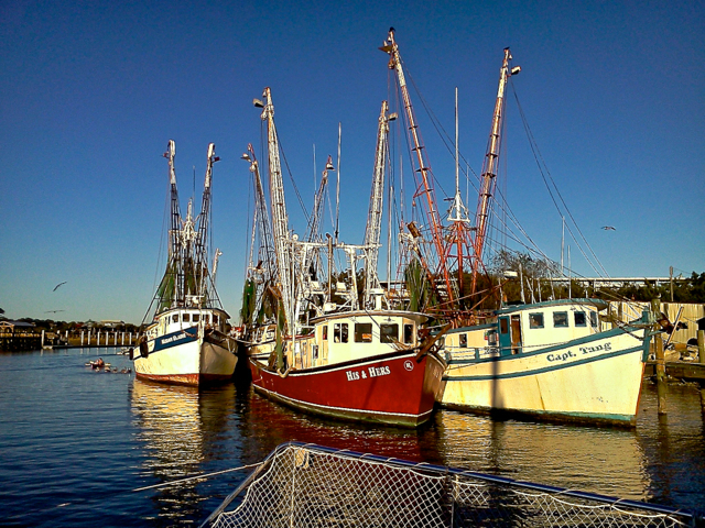 A trio of shrimp boats tie up at the town-owned docks.  Reaching its peak in the 1940's the local shrimp industry at Shem's Creek continues a downward slide with the aggressive pricing of foreign farm-raised shrimp and the general depletion of local shrimp stocks.